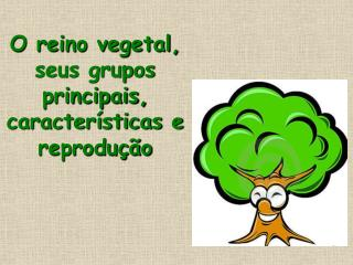 O reino vegetal, seus grupos principais, características e reprodução