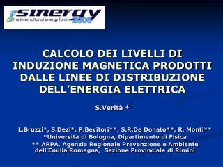 CALCOLO DEI LIVELLI DI INDUZIONE MAGNETICA PRODOTTI DALLE LINEE DI DISTRIBUZIONE DELL'ENERGIA ELETTRICA