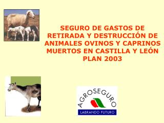 SEGURO DE GASTOS DE RETIRADA Y DESTRUCCI�N DE  ANIMALES OVINOS Y CAPRINOS MUERTOS EN CASTILLA Y LE�N PLAN 2003