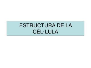ESTRUCTURA DE LA C�L�LULA