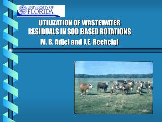 UTILIZATION OF WASTEWATER RESIDUALS IN SOD BASED ROTATIONS M. B. Adjei and J.E. Rechcigl