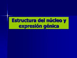 Estructura del núcleo y expresión génica