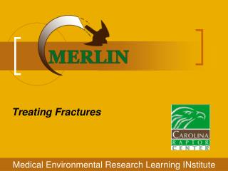 Treating Fractures