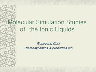 Molecular Simulation Studies  of  the Ionic Liquids