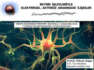 Prof.Dr. Pekcan Ungan H.Ü. Tıp Fakültesi Biyofizik Anabilim Dalı