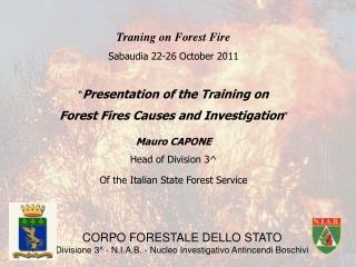 CORPO FORESTALE DELLO STATO Divisione 3^ - N.I.A.B. - Nucleo Investigativo Antincendi Boschivi