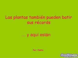 Las plantas también pueden batir sus récords