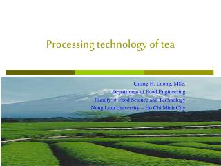 Processing technology of tea