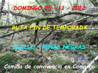 DOMINGO 25 – 11 – 2012 RUTA FIN DE TEMPORADA IGOLLO – PEÑAS NEGRAS Comida de convivencia en Camargo