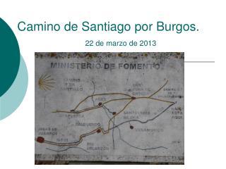 Camino de Santiago por Burgos.  22 de marzo de 2013