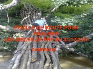 FEUILLE DE ROUTE POUR R�ALISER  LES CIBLES DE FRP AU 31/12/2010
