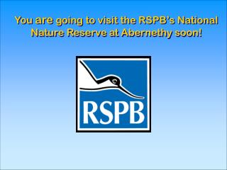 You  are  going to visit the RSPB's National    Nature Reserve at Abernethy soon!
