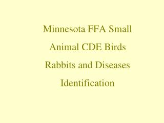 Minnesota FFA Small Animal CDE Birds  Rabbits and Diseases Identification