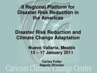 Nuevo Vallarta, Mexico 15 – 17 January 2011  Carlos Fuller Deputy Director