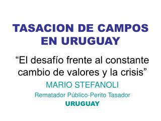 TASACION DE CAMPOS EN URUGUAY