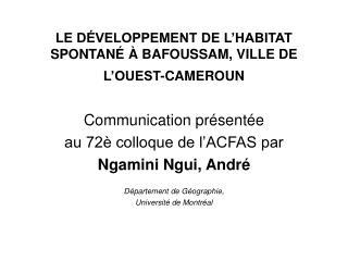 LE DÉVELOPPEMENT DE L'HABITAT SPONTANÉ À BAFOUSSAM, VILLE DE L'OUEST-CAMEROUN