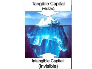 Tangible Capital (visible)