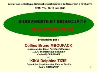 Atelier sur le Dialogue National et participation du Cameroun à l'initiative FEM;  Ydé, 16-17 juin 2008