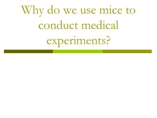 Why do we use mice to conduct medical experiments?