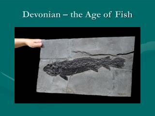 Devonian – the Age of Fish