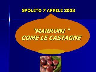 SPOLETO 7 APRILE 2008