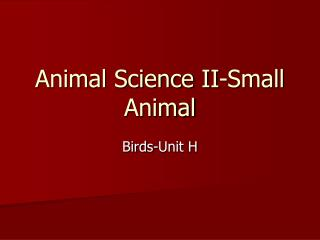 Animal Science II-Small Animal