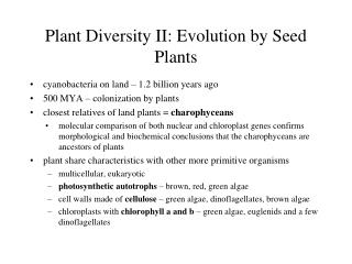 Plant Diversity II: Evolution by Seed Plants