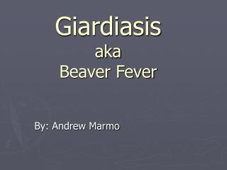 Giardiasis aka Beaver Fever