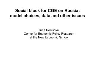 Social block for CGE on Russia: model choices, data and other issues