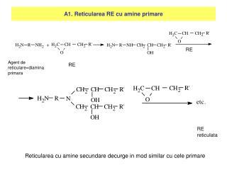 A1. Reticularea RE cu amine primare