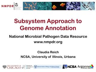 Subsystem Approach to Genome Annotation