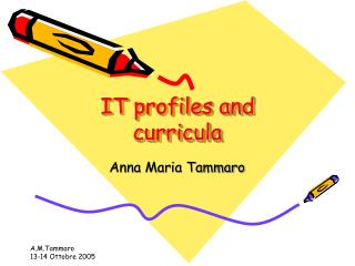 IT profiles and curricula