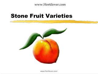 Stone Fruit Varieties