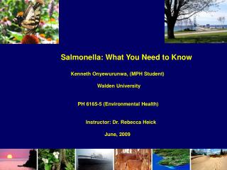 Salmonella: What You Need to Know                                    Kenneth Onyewurunwa, (MPH Student)          Walden