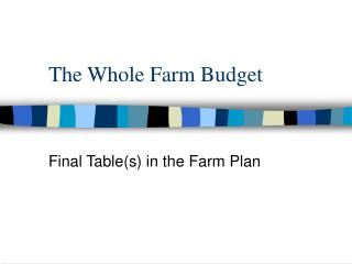 The Whole Farm Budget