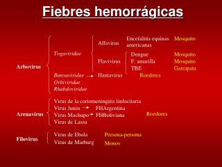 Fiebres hemorrágicas