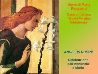 """Serve di Maria Riparatrici Centro mariano """"Beata Vergine Addolorata"""""""