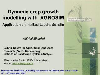 Dynamic crop growth modelling with  AGROSIM  Application on the Bad Lauchstädt site