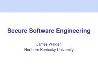 Secure Software Engineering