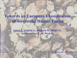Jabiol B.,  Zanella A., Englisch M., Hager H., Katzensteiner K., de Waal R.