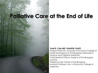 Palliative Care at the End of Life