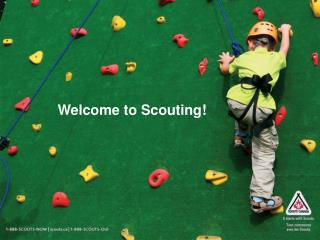 Welcome to Scouting!