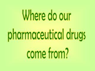 Where do our  pharmaceutical drugs  come from?