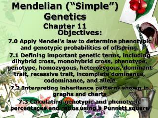 "Mendelian  (""Simple"") Genetics Chapter 11"