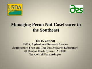 Managing  Pecan Nut  Casebearer in the Southeast