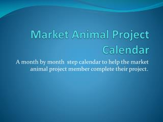 Market Animal Project Calendar