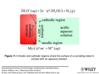 Figure 11.1  Anodic and cathodic regions share the surface of a corroding metal in contact with an aqueous solution.