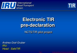 Electronic TIR  pre-declaration