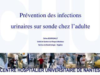 Prévention des infections  urinaires sur sonde chez l'adulte Céline BOURIGAULT Unité de Gestion du Risque Infectieux Se