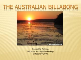 The Australian Billabong